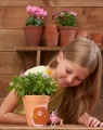 My Fairy Garden - pohádkový květináč Alltoys