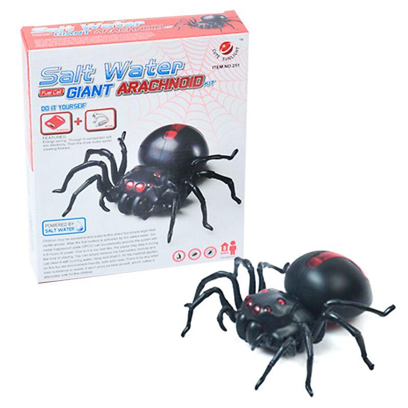 Pavouk na slanou vodu HM STUDIO
