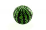Míč meloun plast 20cm v síťce Teddies