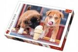 Puzzle Pejsci se zmrzlinou 500 dílků 48x34cm v krabici 40x27x4,5cm
