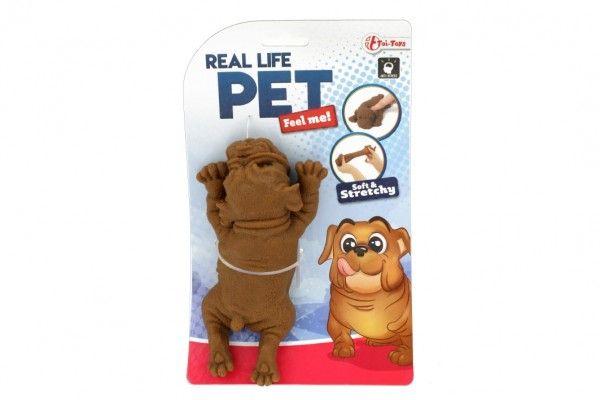 Pes antistresový guma 14cm 2 barvy v sáčku Teddies