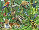 Puzzle Deštný prales Jižní Ameriky 70 dílků