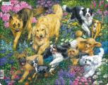 Puzzle Psi v poli s květinami 32 dílků