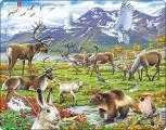 Puzzle Zvířata ve stepi 50 dílků