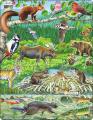 Puzzle Zvířátka v lese 45 dílků