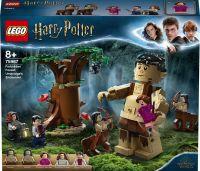 Lego Harry Potter 75967 Zapovězený les: Setkání Drápa a profesorky