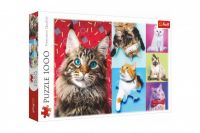Puzzle Šťastné kočky 1000 dílků 68,3x48cm v krabici 40x27x6cm
