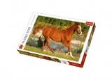 Puzzle Kůň 500 dílků 48x34cm v krabici 40x27x4,5cm